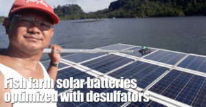 Fish Farm Solar Batteries Optimized With Desulfators